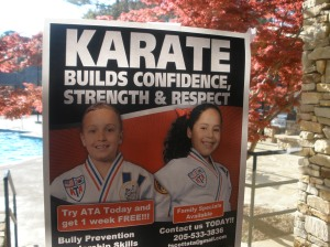Some ATA Taekwondo guy puts these posters up around my neighborhood. Bully prevention and leadership skills from Karate training huh? Except for the fact it's not Karate. Heck it isn't even really Taekwondo!
